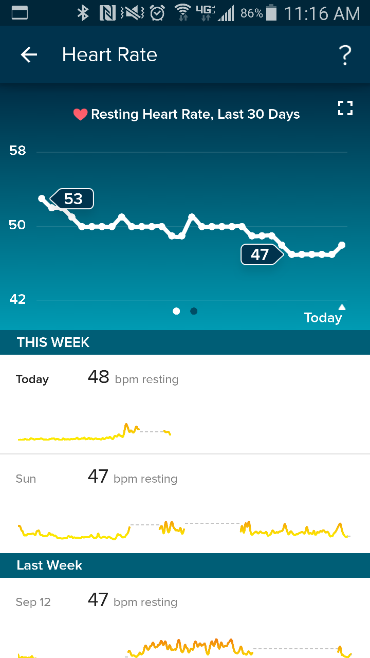 Resting heart rate graph fitbit community heart rate dashboard nvjuhfo Choice Image