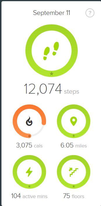 Floors Climbed Fitbit Community