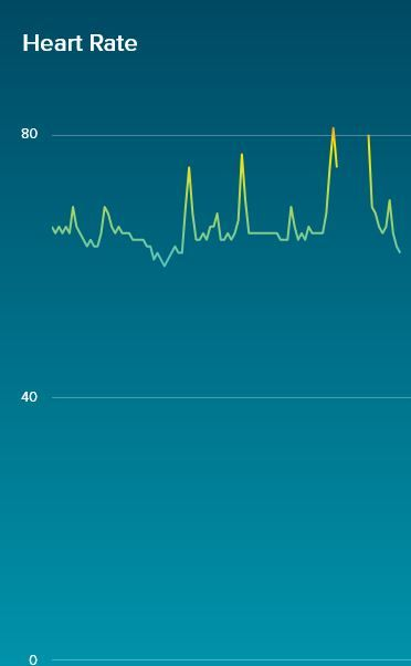 how to change fitbit settings