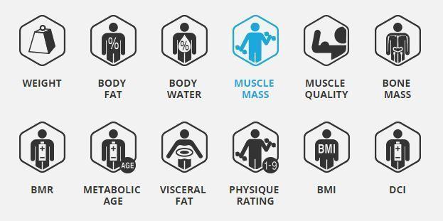 body fat percentage omron
