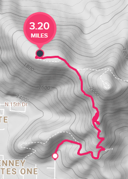 Inaccurate GPS distance when tracking hike - Fitbit Community